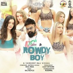 Rowdy Boy mp3 song download naa songs