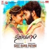 Seethayanam Naa Songs