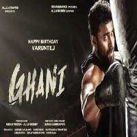 Ghani Songs Download